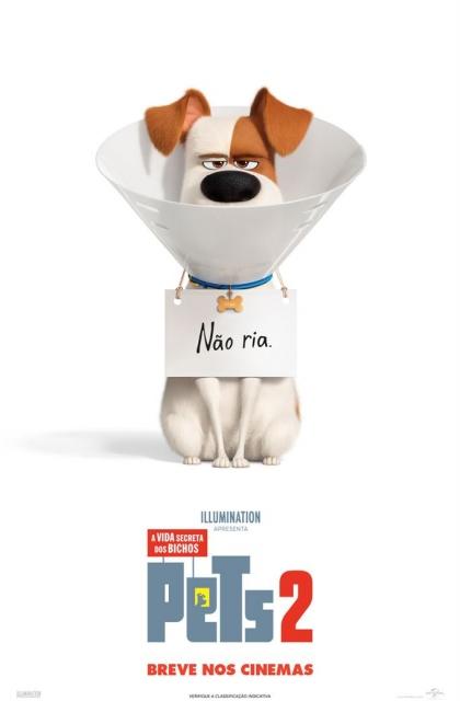 Pets - A Vida Secreta dos Bichos 2 (2019) Poster